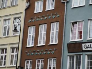 gdansk5魚の模様が面白い (640x480)