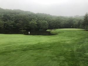 50ゴルフ4
