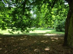 ワルシャワ13-ワジェンキ公園 (640x480)