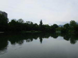 36中島公園